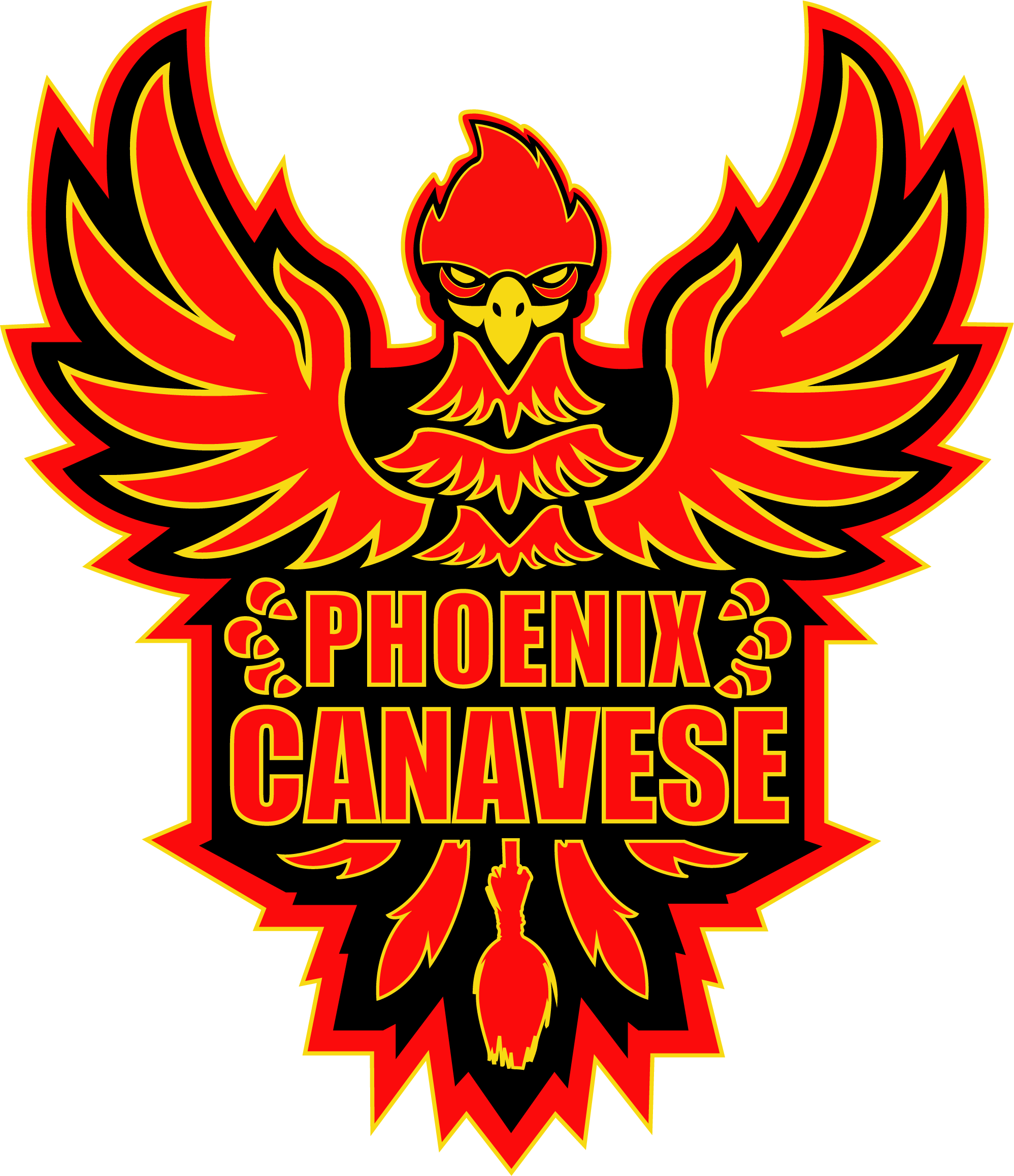 Logo Phoenix Canavese Quidditch